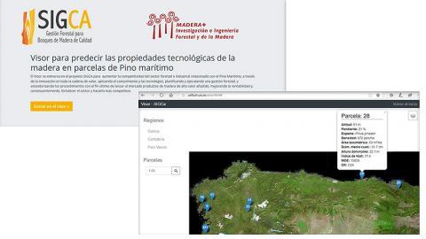 innovación, visor, GIS, masa, madera, calidad, producción, I+D+i, algoritmos, Cesefor, MaderaPlus