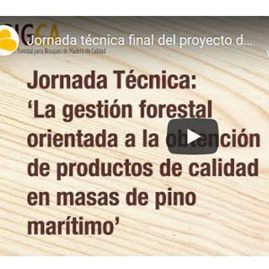 Boletín 7: Presentaciones y vídeo de la  jornada 'La gestión forestal orientada a la obtención de productos de calidad en masas de pino marítimo'